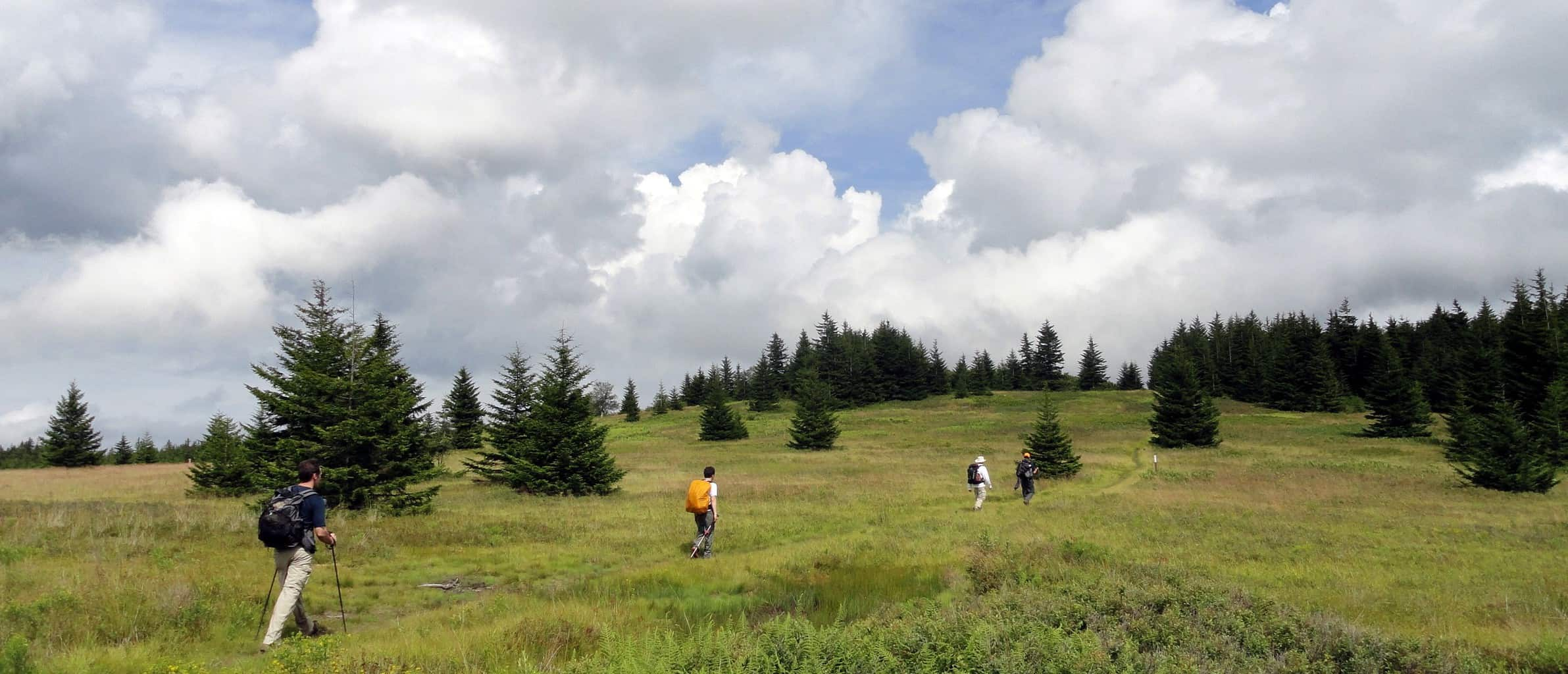 Backpacking through Bogs and Blueberries: 18 Miles in Dolly Sods North