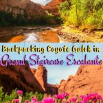 Backpacking Coyote Gulch in Grand Staircase Escalante utah, trip-reports, backpacking