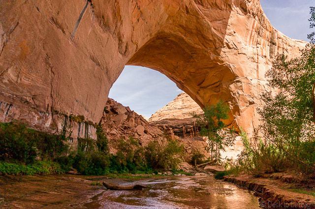 J. Hamblin Arch along Coyote Gulch