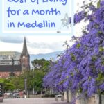 Cost of Living for a Month in Medellin travel, south-america, medellin, expense-reports, colombia, budget-and-finance