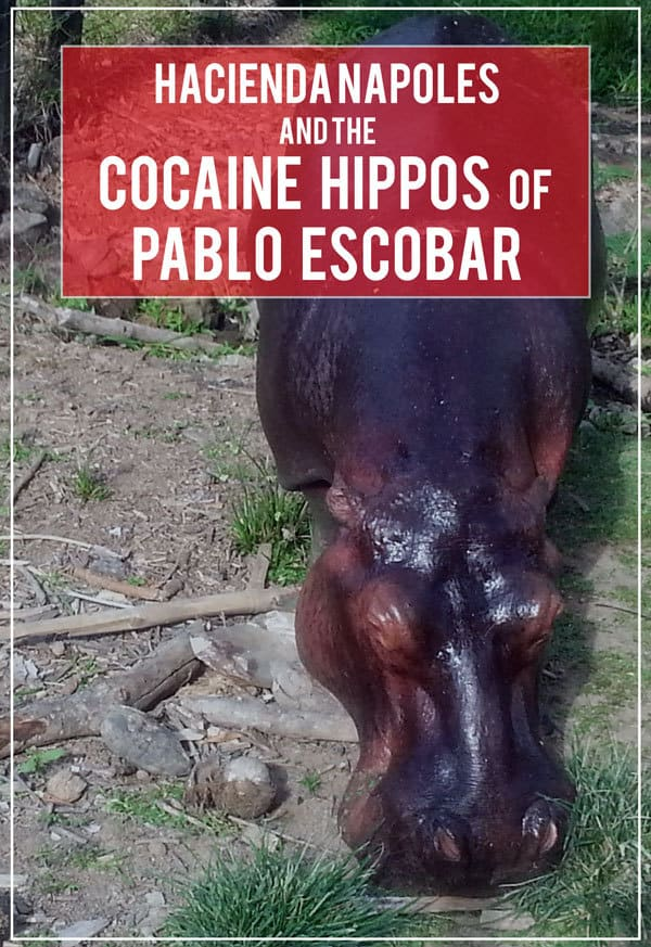 A visit to Hacienda Napoles today, the former estate of Pablo Escobar, turned theme park, safari, and water park, and a glimpse into Colombia's dark past.
