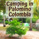 Throw Another Coconut on the Fire - Palomino Colombia