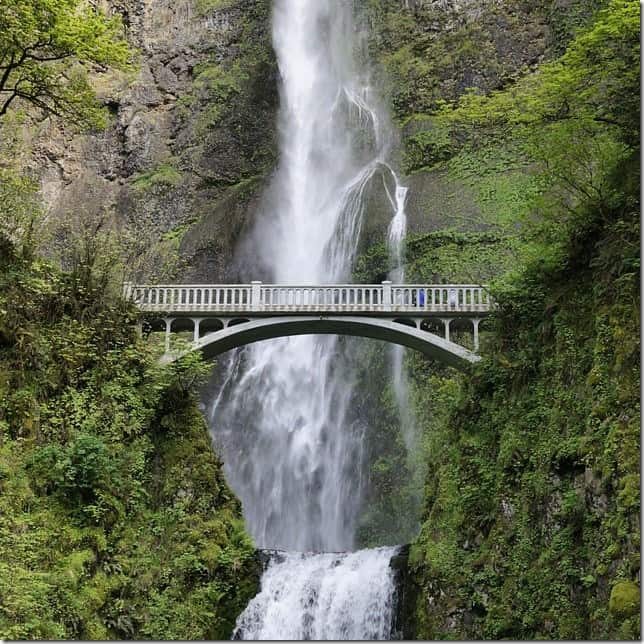 Multnomah Falls along the Columbia River Gorge