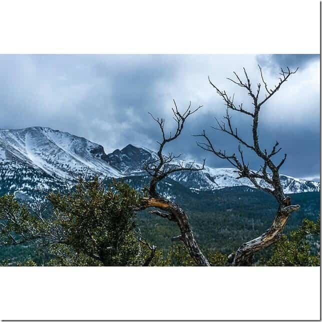 Visit Great Basin National Park in Nevada