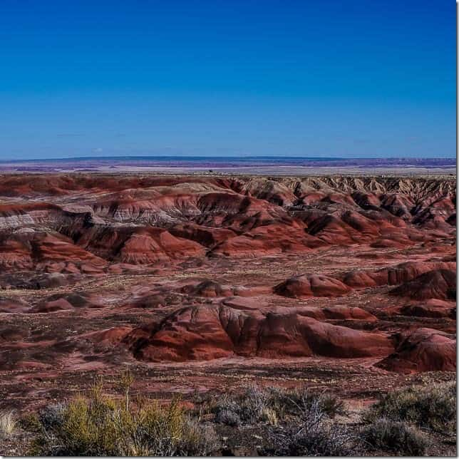 Explore the Painted Hills in Petrified Forest National Park Arizona