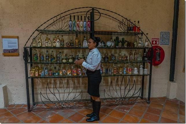 tequila mexico tour-17