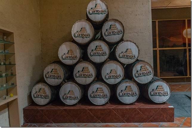 tequila mexico tour-18
