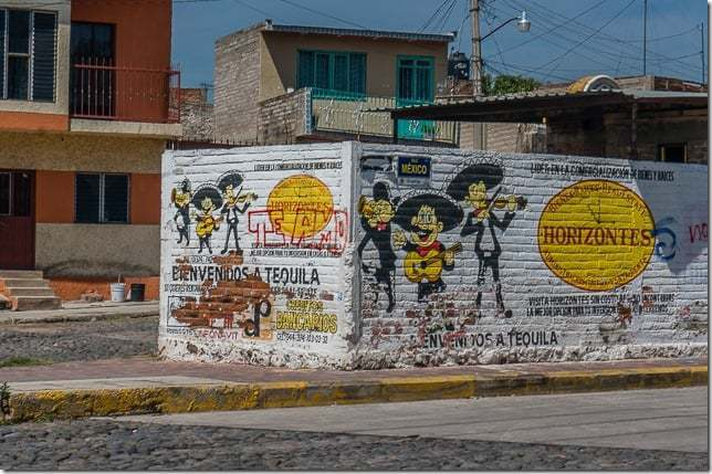 tequila mexico tour-2