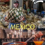 The Town of Tequila and the La Cofradia Factory Tour