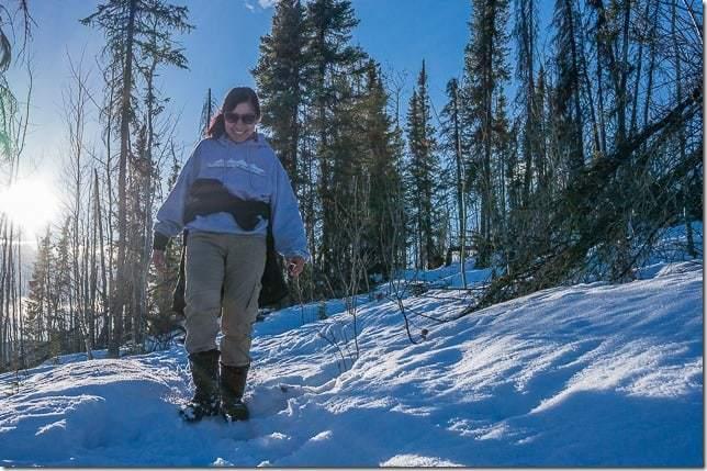 northern lights in fairbanks alaska-20