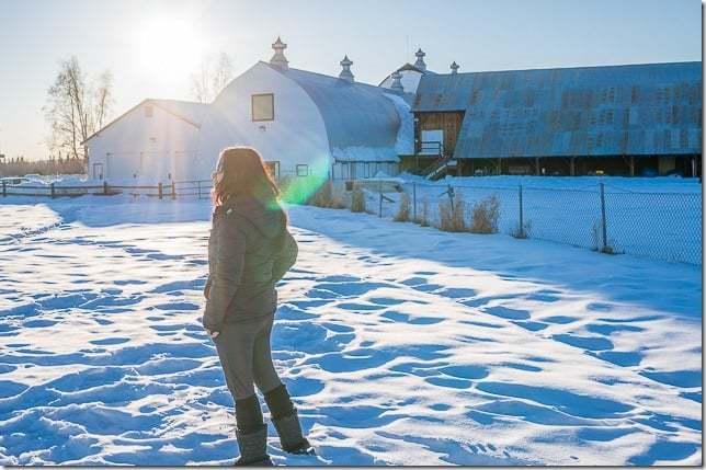 northern lights in fairbanks alaska-7