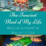 The Fanciest Meal of My Life - Molecular Gastronomy in Medellin's El Cielo travel, south-america, medellin, colombia