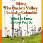 Hiking the Cocora Valley - What to Know Before You Go travel, south-america, colombia