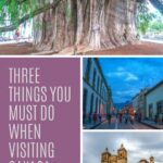 Three Things You Must Do When Visiting Oaxaca Mexico travel, mexico, central-america