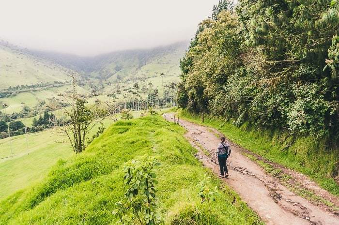 Hiking in Cocora Valley near Salento, Colombia