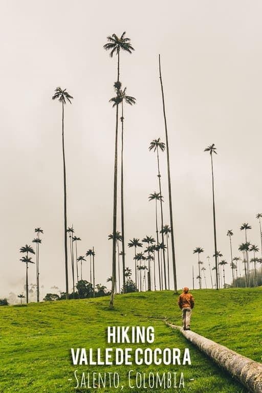 What you need to know before hiking in Valle de Cocora near Salento, Colombia