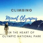 Climbing Mount Olympus in the Heart of Olympic National Park washington, trip-reports, alpine