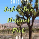 A Quick Guide to Joshua Tree National Park travel, north-america, california