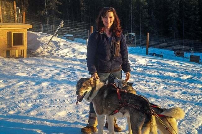 Alaska Dog Sledding Sirius Sled Dogs