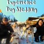 Experiencing Alaska Dog Sledding with Sirius Sled Dogs travel, north-america, alaska