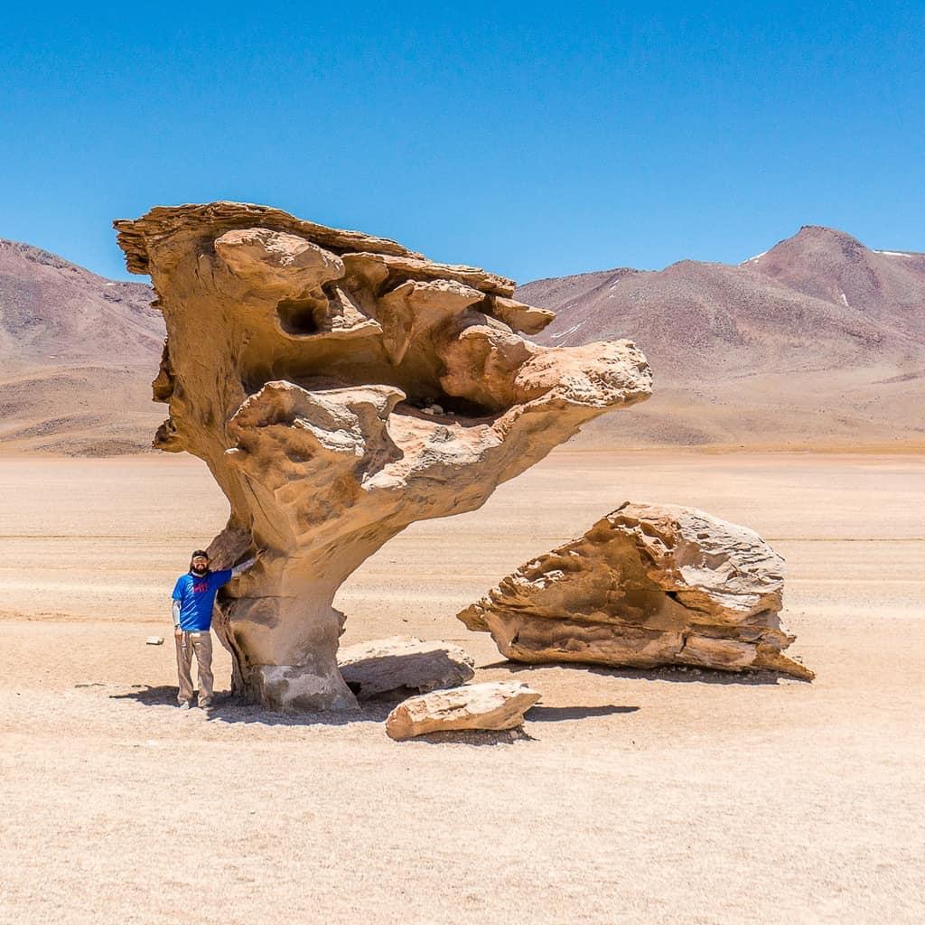 Lagunas Route in Bolivia - Piedra de Arbol