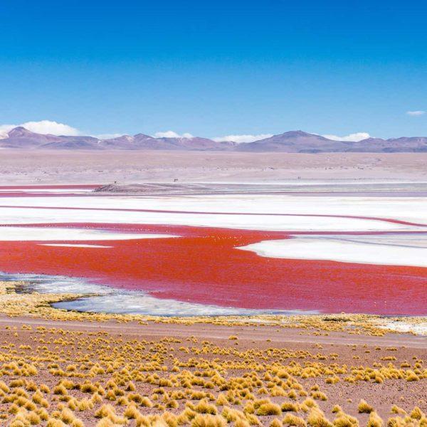 The Laguna Colorada in Bolivia's Lagunas Route