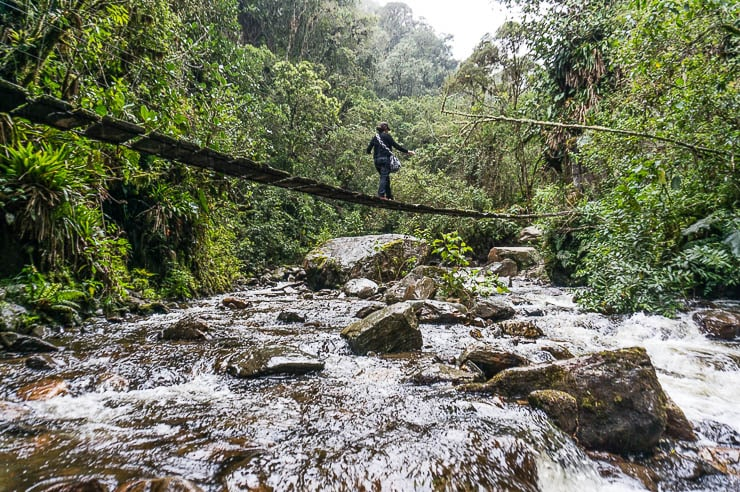 Crossing slick old swinging bridges is one reason why you might want travel insurance for Colombia