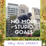 No More Stupid Goals: Why Are SMART Goals Important? armchair-alpinist