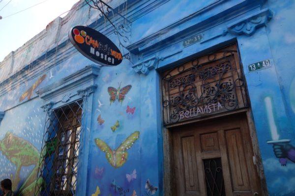 best bogota hostels casa bellavista hostel