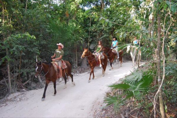 playa del carmen tours zip lining horseback riding