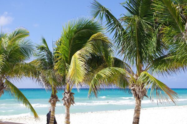 playa del carmen tours