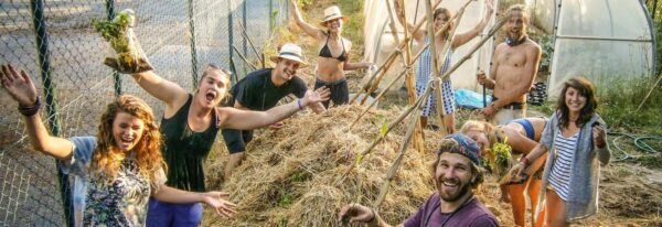volunteering abroad wwoof