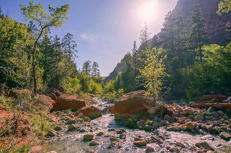 The gorgeous and wild La Verkin Creek in the Kolob Canyon section of Zion National Park