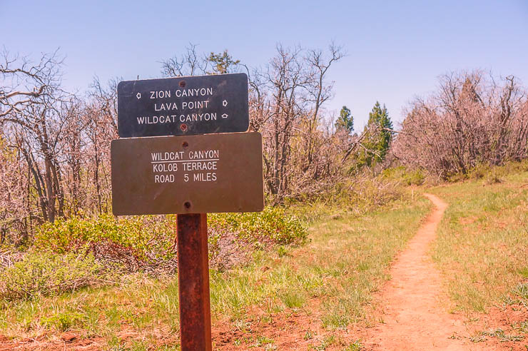 Great signage throughout many Zion National Park hikes, including this one on the Zion Traverse